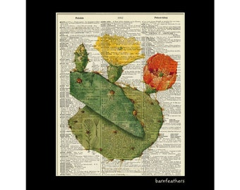 Vintage Dictionary Art Print - Blooming Cactus - Dictionary Page - Book Art Print No. P62