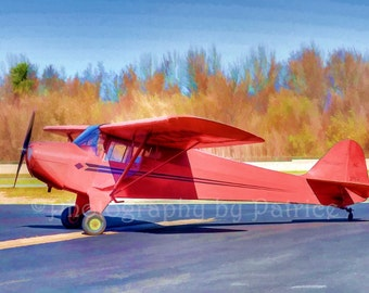 Little Red Airplane - 8x12 original photo