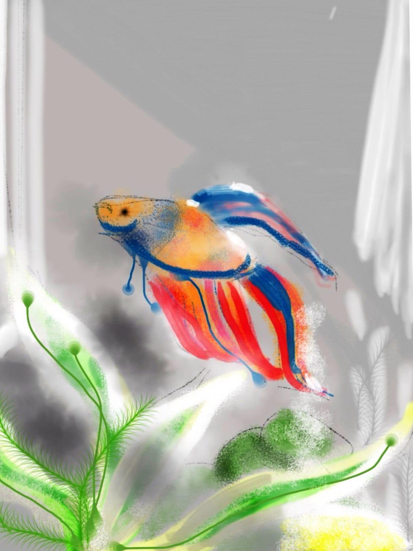 Un petit conte de poisson bleu au rouge art mural art for Quoi mettre aquarium poisson rouge