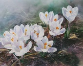 Wecome To Spring - An Original Watercolor - PaintedBranchStudio