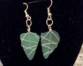Cape Cod surf tumbled green beach sea glass earrings wrapped in gold wire