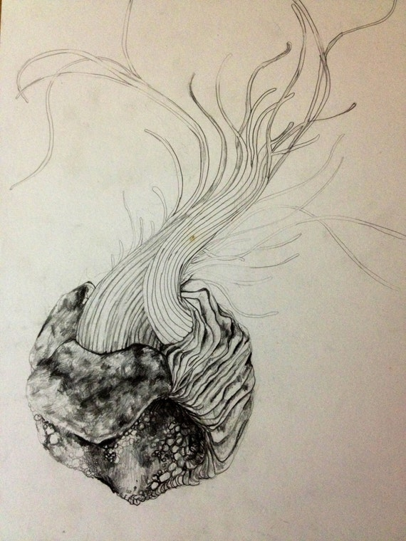 Items similar to Abstract Sea Monster Pencil Drawing 6 out ...