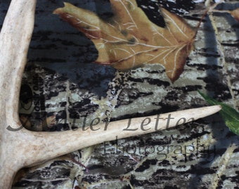 SALE-Letter E, Antler, Whitetail Buck Shed, Photography, Alphabet, Hunting