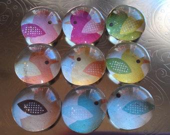 Jaunty Ducklings Glass Magnet set