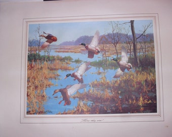 Original Painting by Richard E. Bishop Reproduced in Tintogravure - Brown And Bigelow