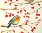Robins and Rosehips - AbingdonArts