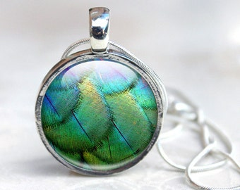 Picture Pendant wearable art Feather Glass Pendant Necklace, Greens and Blues Iridescent Bird Feather Photo Necklace