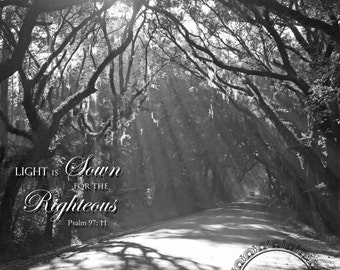 Scripture Art, Black & White Photography, South Carolina, Prophetic Art, Christian Art, Trees, Prints and CANVAS Available