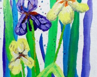 The Irises - 8 x 10 (Print)
