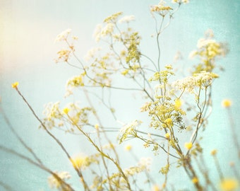 Nature Photography, Wild flowers, Meadow, Aqua, Yellow, Fine Art print, Home Decor.