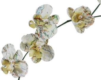Paper Flowers Eternal Orchids with Vintage Italian Road Map and Freshwater Pearls