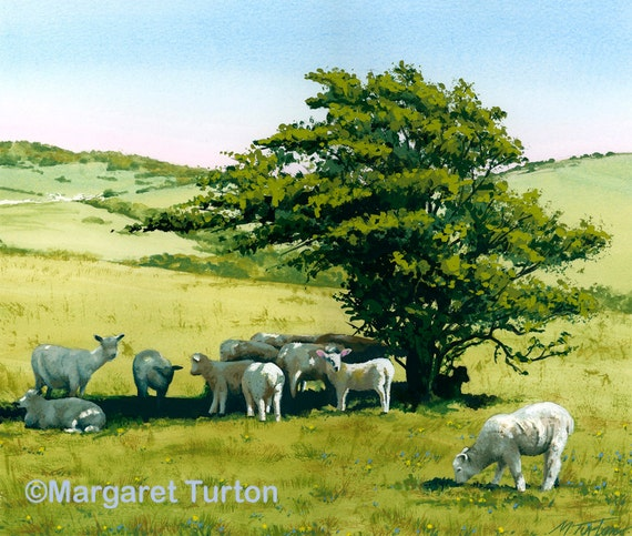Hot Lamb on the South Downs, mounted print signed