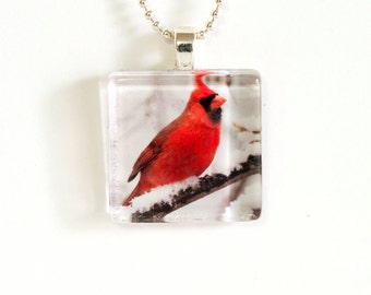 Cardinal in the Snow Photo Pendant Necklace - Photo Necklace - Photo Jewelry - Cardinal Necklace - 24 Inch Silver Plated Ball Chain Incl