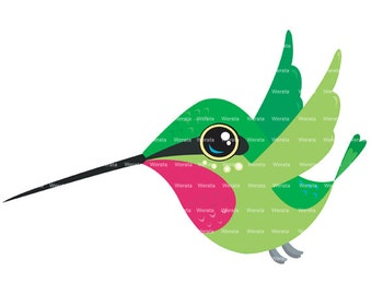 Hummingbird Clip Art - clipart- digital clipart - digital clip art commercial - digital clip art graphics - Personal and Commercial Use