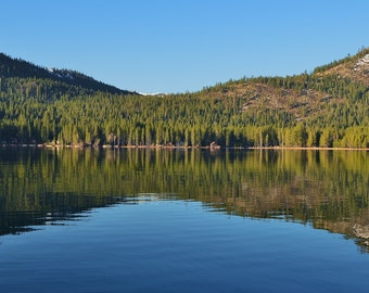Treeline Reflection in the Lake 9 x 12 Glossy print
