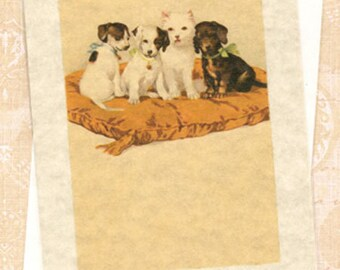 Doggies on Pillow Blank Note Card Blank Note Card