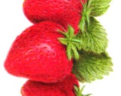 "Strawberry ACEO - Art Card 2.5"" x 3.5"" Original Colored Pencil Drawing by Mary Rogers"