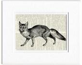 fox II dictionary page print
