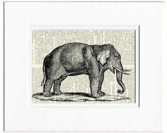 elephant dictionary page print