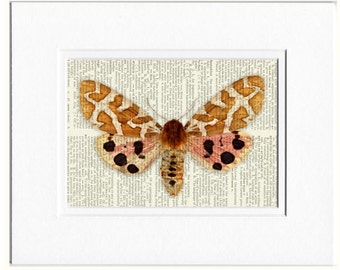 pink and brown butterfly print