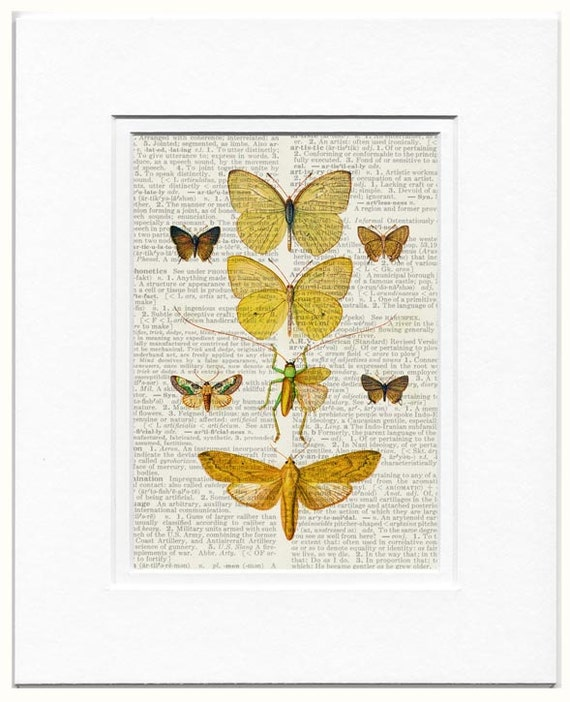butterflies VII dictionary page print
