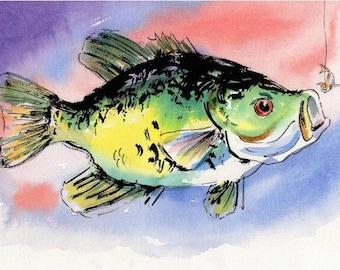 Original Fish Watercolor Art: Black Crappie by Barry Singer