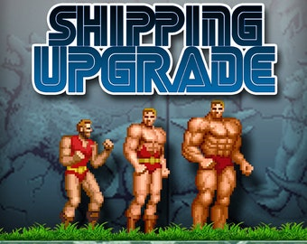 Shipping Upgrade Fed Ex next business day