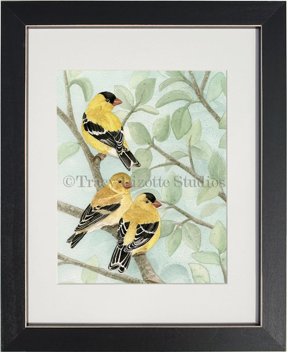 Bird Tree with Goldfinches - archival watercolor print by Tracy Lizotte