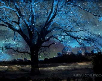 Nature Photography, Surreal Blue Starry Gothic Trees Nature, Blue Spooky Tree Nature Landscape, Fantasy Gothic Blue Nature Photo, Fairytale