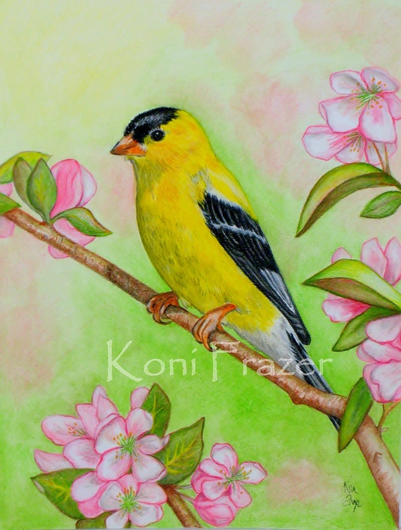 Yellow goldfinch original watercolor painting, bright and fun home decor, wall decor