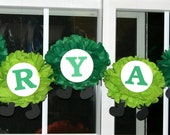 Caterpillar pom pom kit personalized name banner baby shower first birthday party decoration ladybug bumble bee