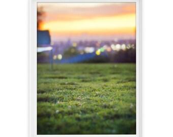 Los Angeles 11 (Sunset Grass) // Fine Art Giclée Print // Photography