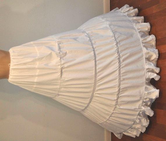 Hoop Skirt Costume 22