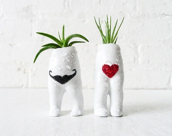Antique I Heart Mustache Twins - Air Plant Garden Love - Vintage German Dolls - Live Headless Planters