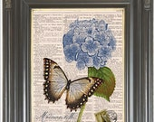 Blue hydrangea Butterfly dictionary art print COUPON SALE Wall decor Antique dictionary Sheet music page Digital art print Item No 532