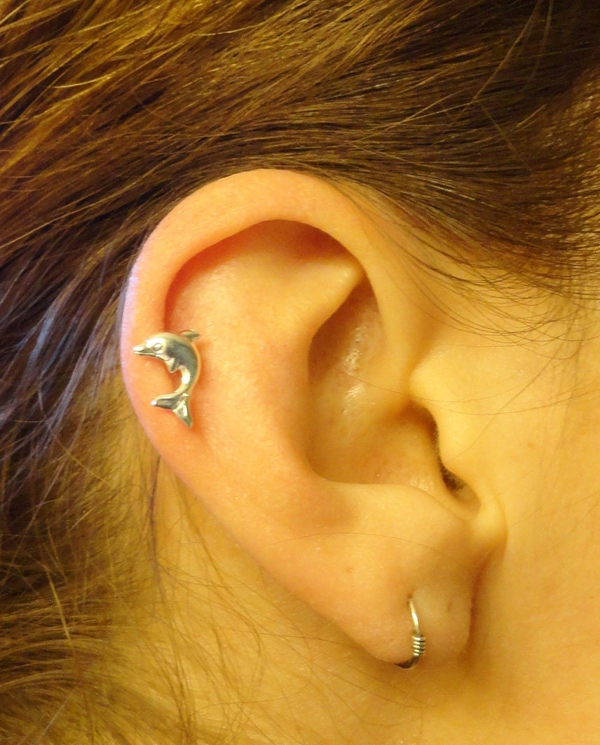 dolphin cartilage earring tragus helix piercing