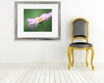 pink flower photograph cosmos fine art photo spring garden green wall art nature