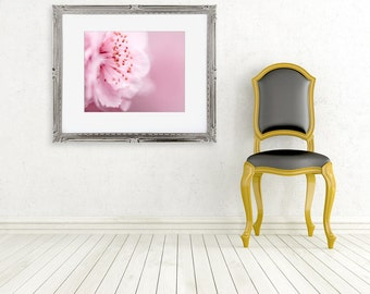 pink blossom photograph fine art flower photo baby girl nursery pastel spring feminine wall decor nature