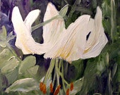 Nature Art Botanical Garden Woodland Flower Lily Oil Painting by Laurie Rohner