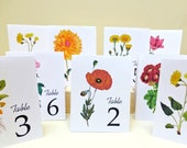 Wedding Table Numbers, Vintage Table Card, Vintage Botanical Illustrations, Table Numbers, Table Tents, Floral Assortment