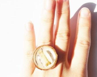 bone ring taxidermy jewelry, metalsmithed to custom size - SPECIMEN
