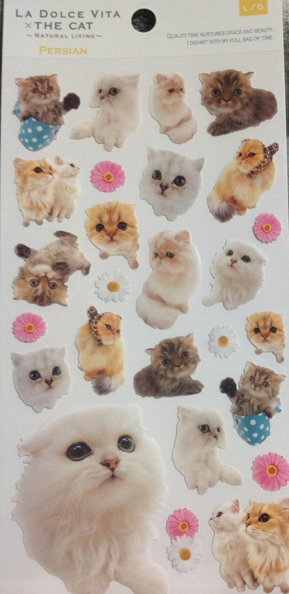 Kawaii Japan Sticker Sheet Assort: Big Photo Cats 2 PERSIAN