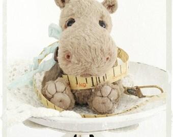 "PDF  Instant Download Pattern / E-Book Hippo  "" DIEGO "" :) - 6 Inch - Eileen Seifert - Teddy-Manufaktur.de"