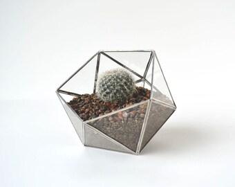 Glass Terrarium - Succulent Terrarium - Geometric Terrarium