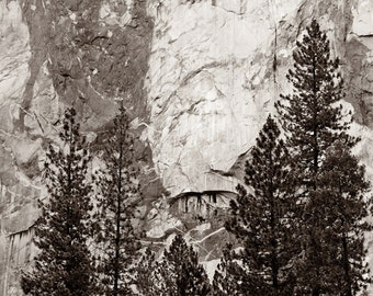 Yosemite National Park Print, California Photography, California Landscape Wall Art, El Capitan, Black And White Fine Art Photograph