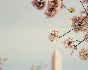 Spring in DC I - Photographic Print - Pink Cherry Blossom, Spring, Festival, Washington, D.C., Washington Monument, Romantic, capital, decor