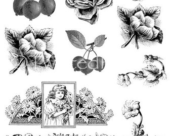 Victorian Line Art Illustrations Collage Sheet for Mixed Media, Steampunk Art in both JPEG and PNG files, CS13-195b