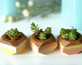 Geometric Mini Planters set of 3, for succulents, Home Decor
