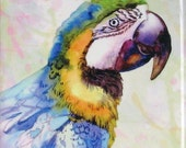 "Hand Painted Ceramic Tile Wall Art - Painting ""the merry parrot"" watercolour - sublimation, home decoration 10x10 cm, animal - parrots"