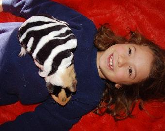 Zebra Guinea Pig Cape